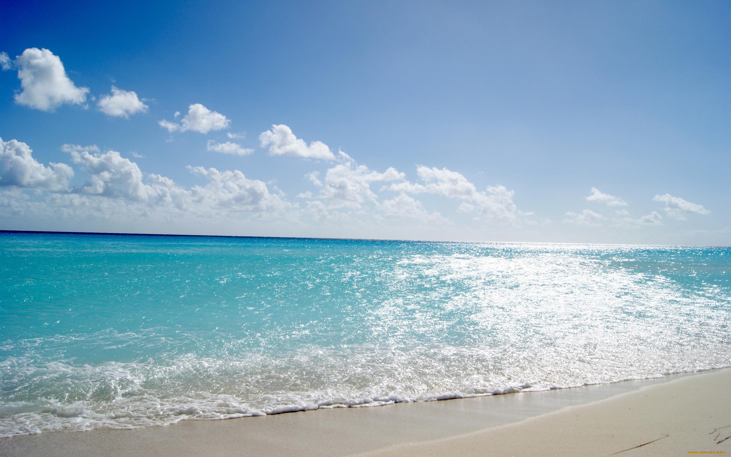 фото море океан пляж которой все лежало
